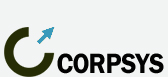 Консалтинговая компания «Корпоративные системы управления»